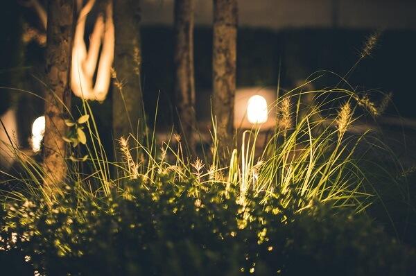 Front garden lights