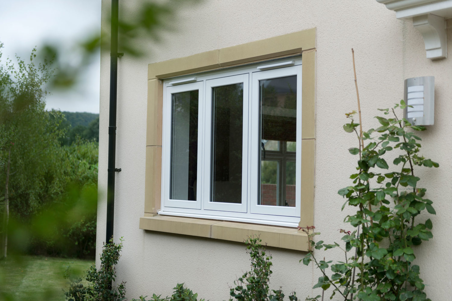 cost of double glazed sash windows brentwood